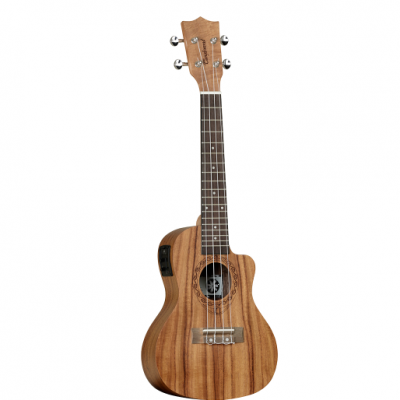 Tanglewood, TWT16E, Ukulele,Concert, Tanglewood near me, Tanglewood Cape Town,